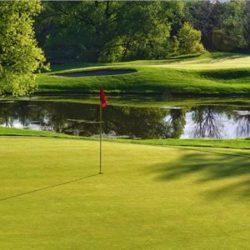 24th Annual Celebrity Golf Tournament