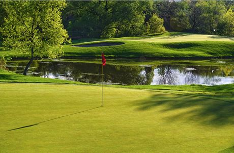 23rd Celebrity Golf Tournament